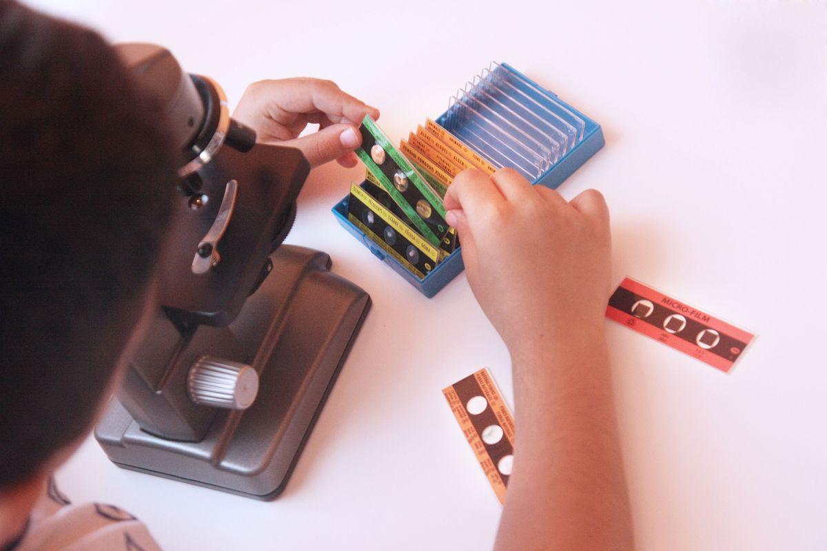 Eligiendo las muestras para el microscopio Miniland