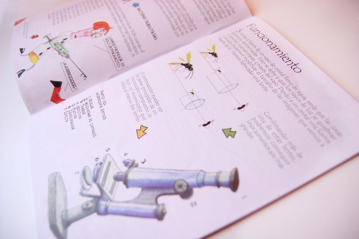 instrucciones para el microscopio