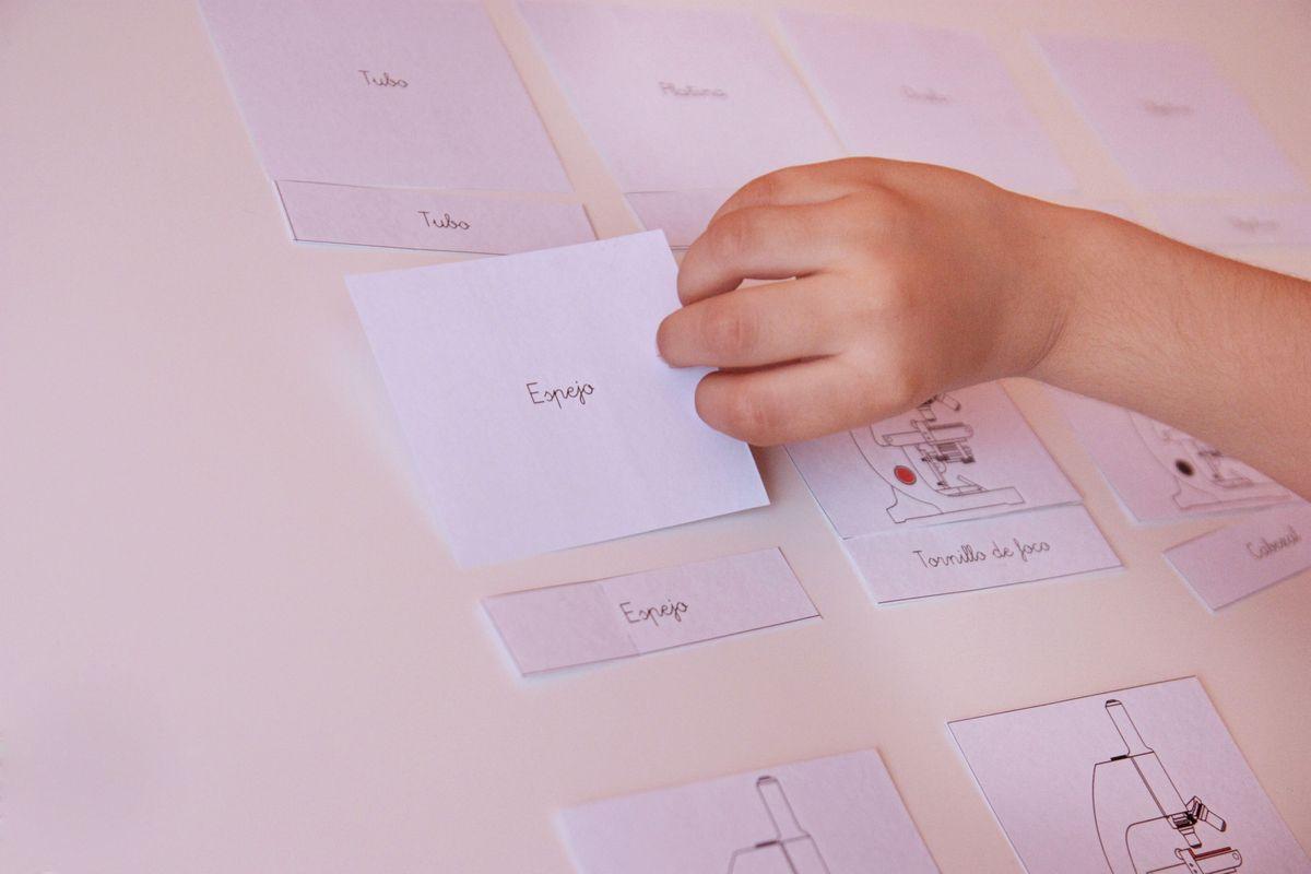 tarjetas autocorrectivas Montessori