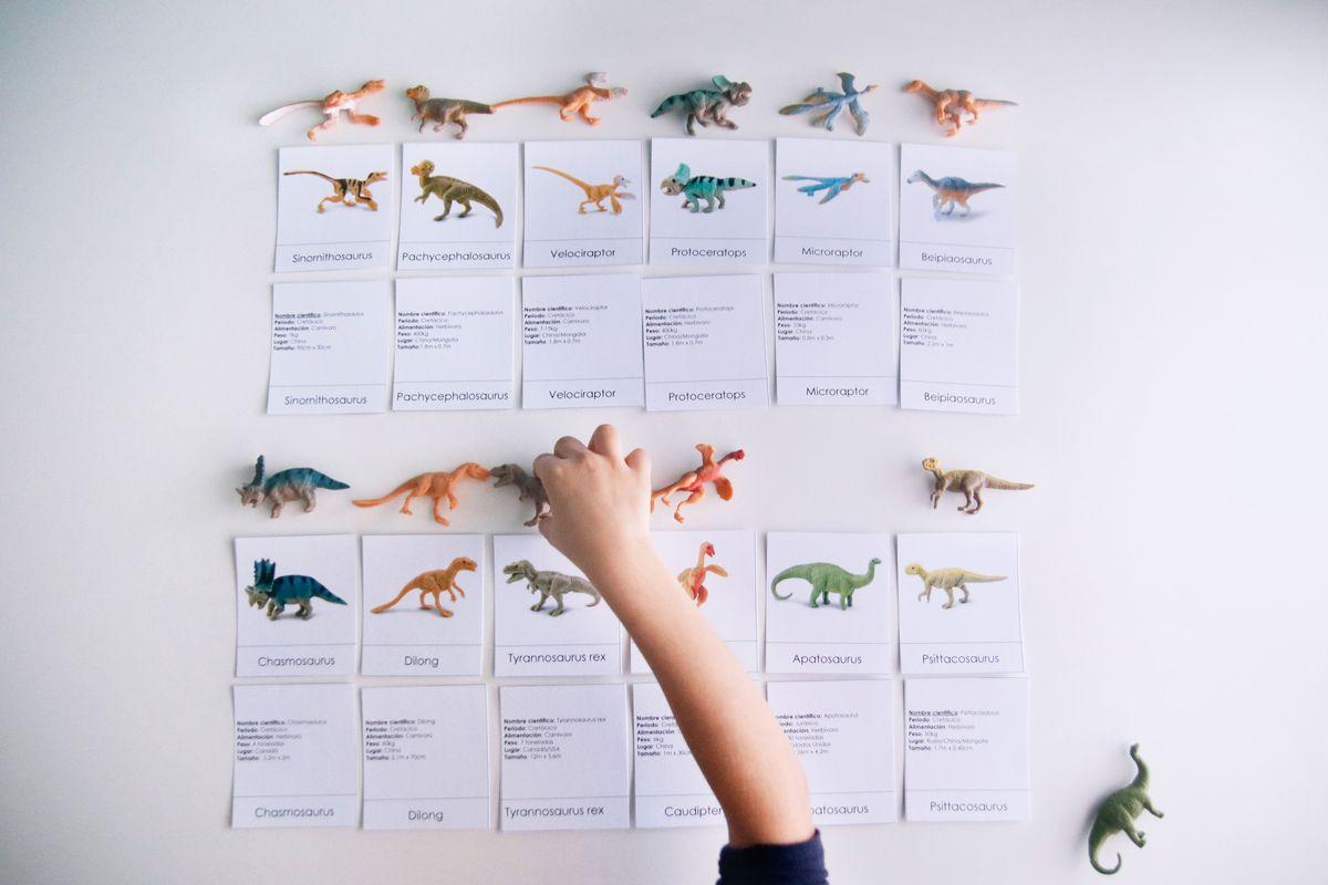miniaturas-dinosaurios-nomenclatura-y-datos