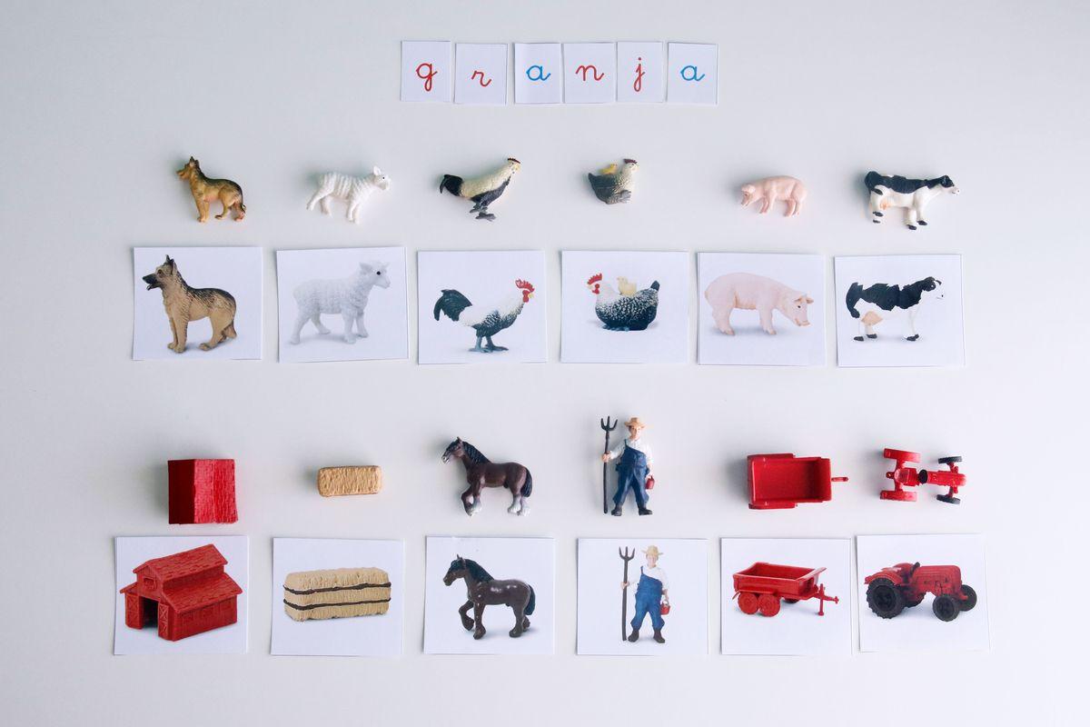 tarjetas-montessori-imagen-imagen