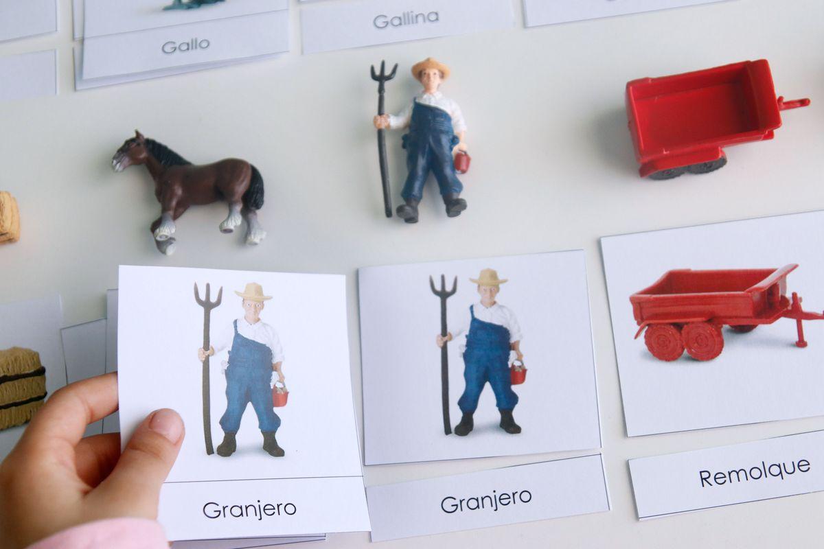 tarjetas-tres-partes-autocorreccion