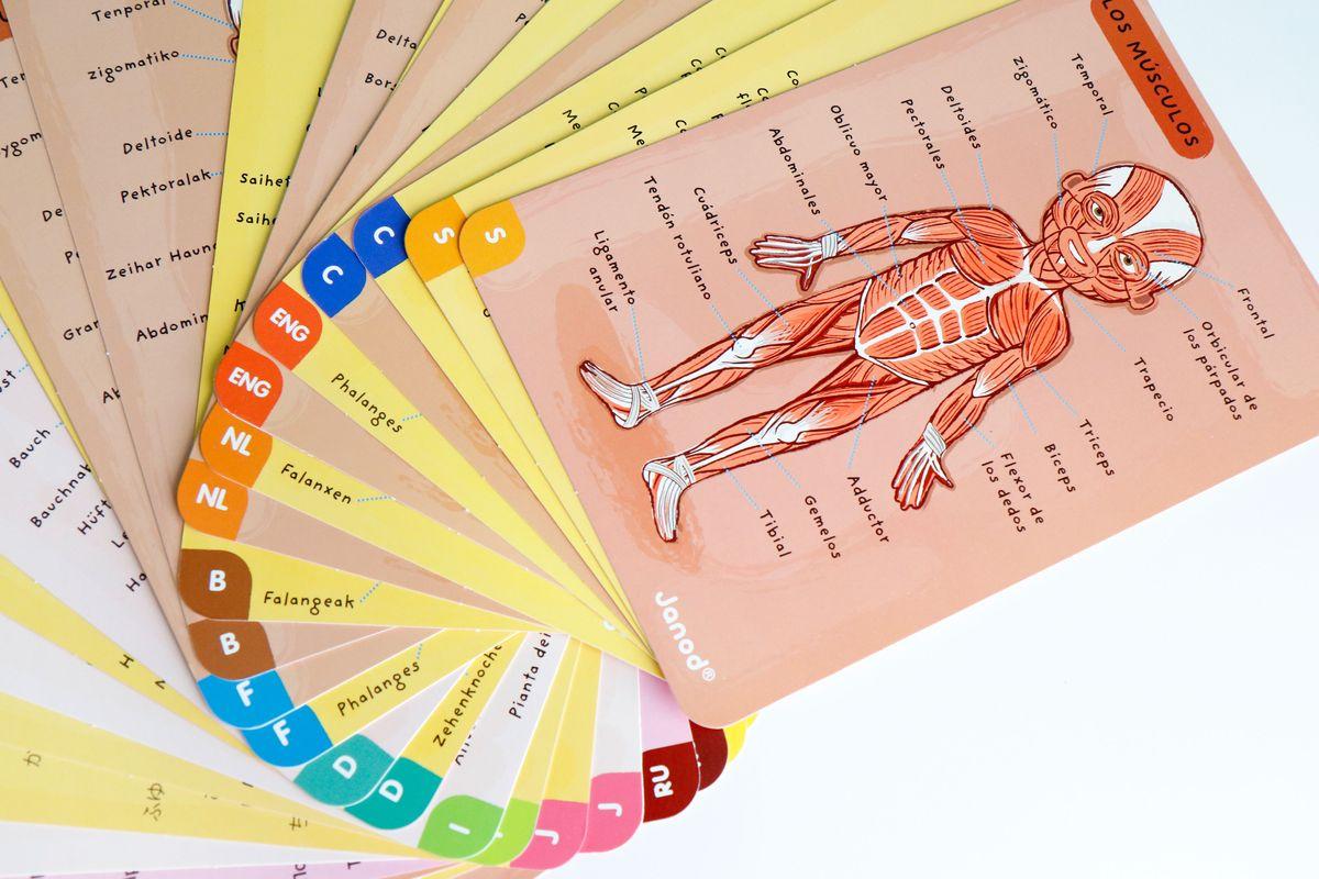 tarjetas-de-idiomas