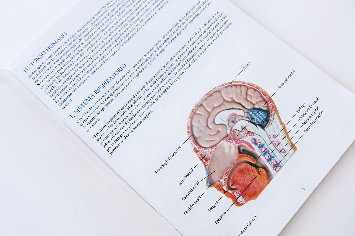 guia-didactica-informativa