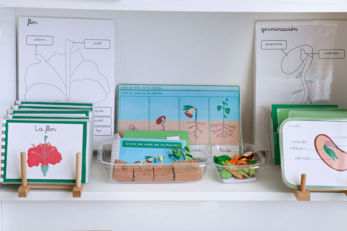 botanica-montessori-material-impreso
