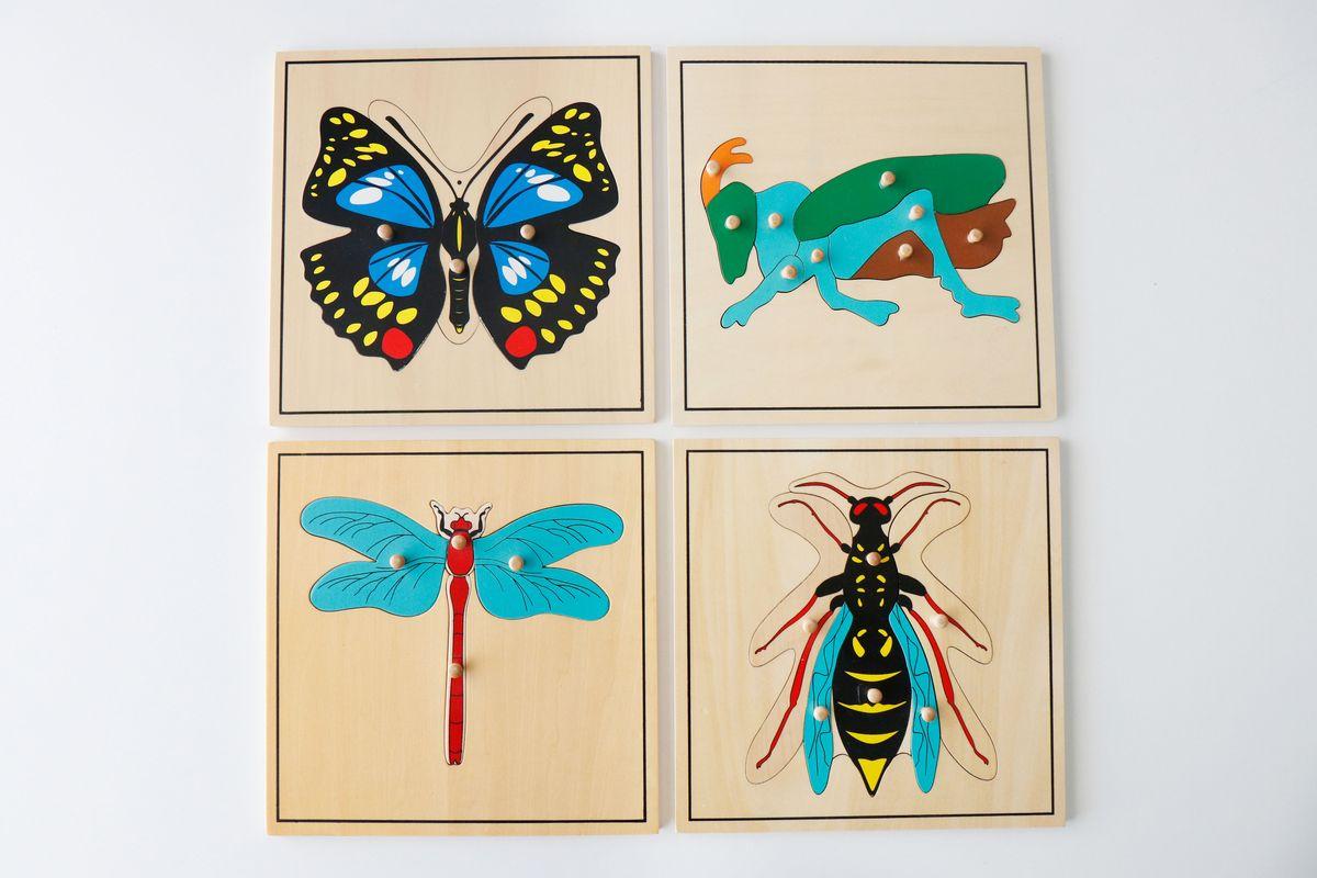 puzles-de-zoologia-montessori-insectos