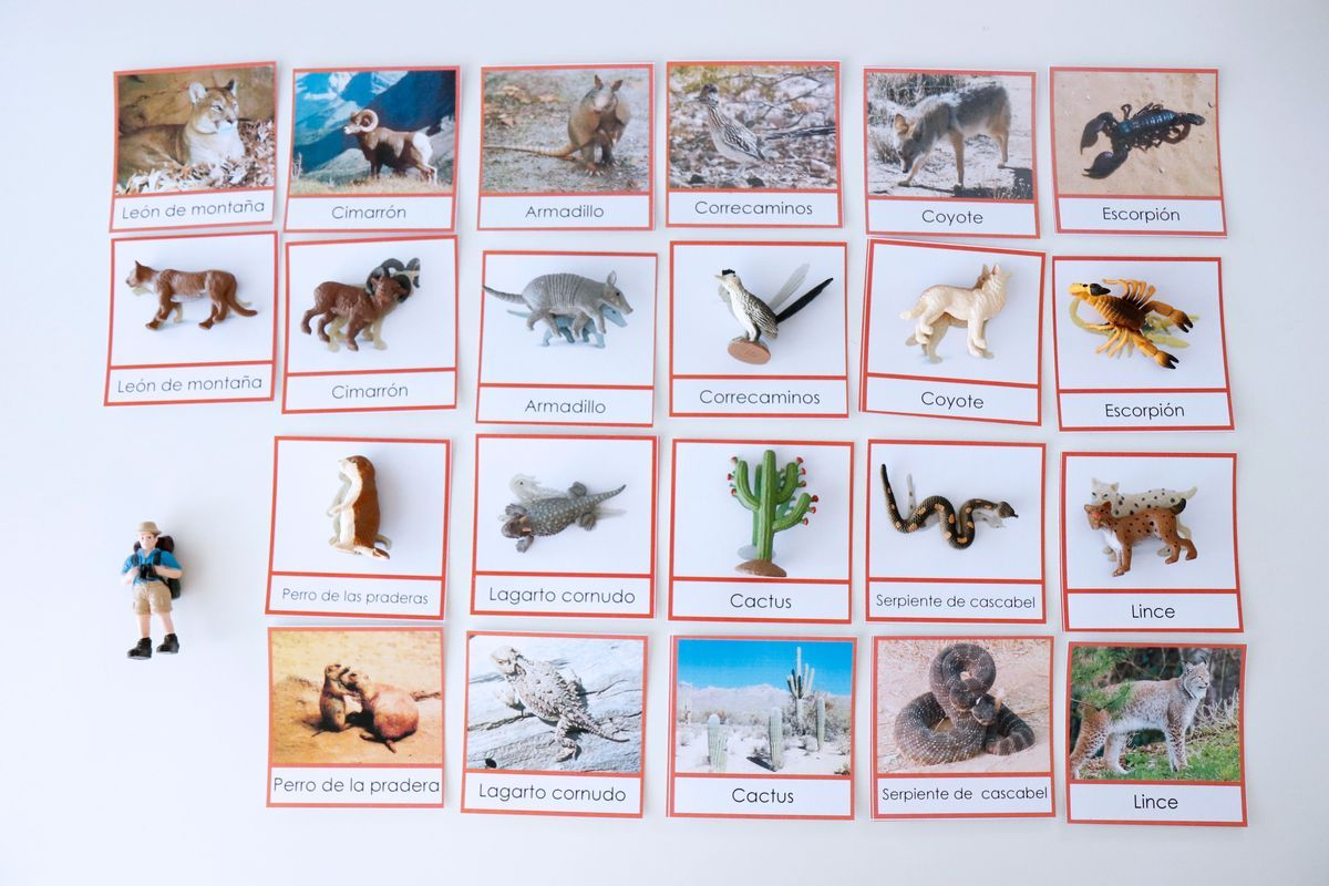 inventario-de-animales-kalandraka-12