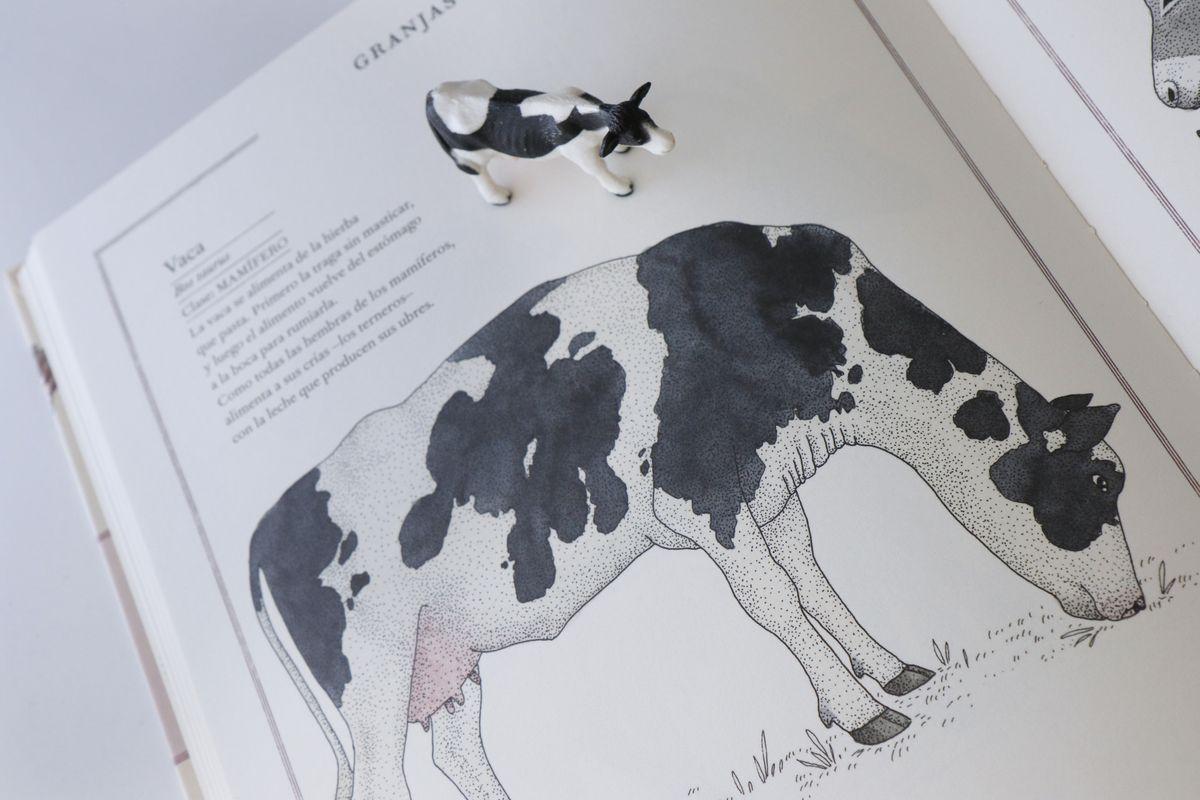 inventario-de-animales-kalandraka-15