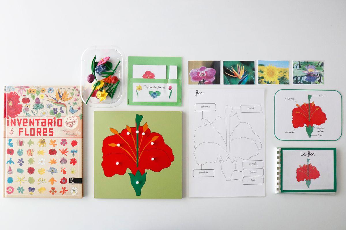 inventario-de-flores-kalandraka-03