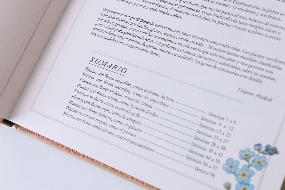 inventario-de-flores-kalandraka-05
