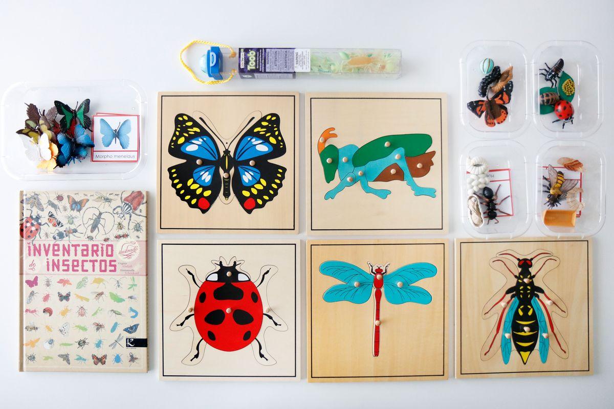 inventario-de-insectos-kalandraka-13