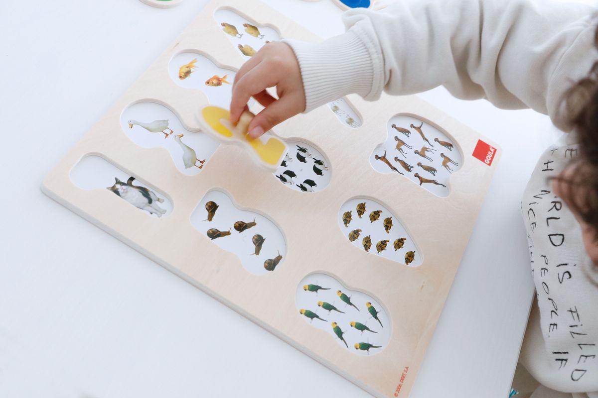 puzle-numeros-goula-05