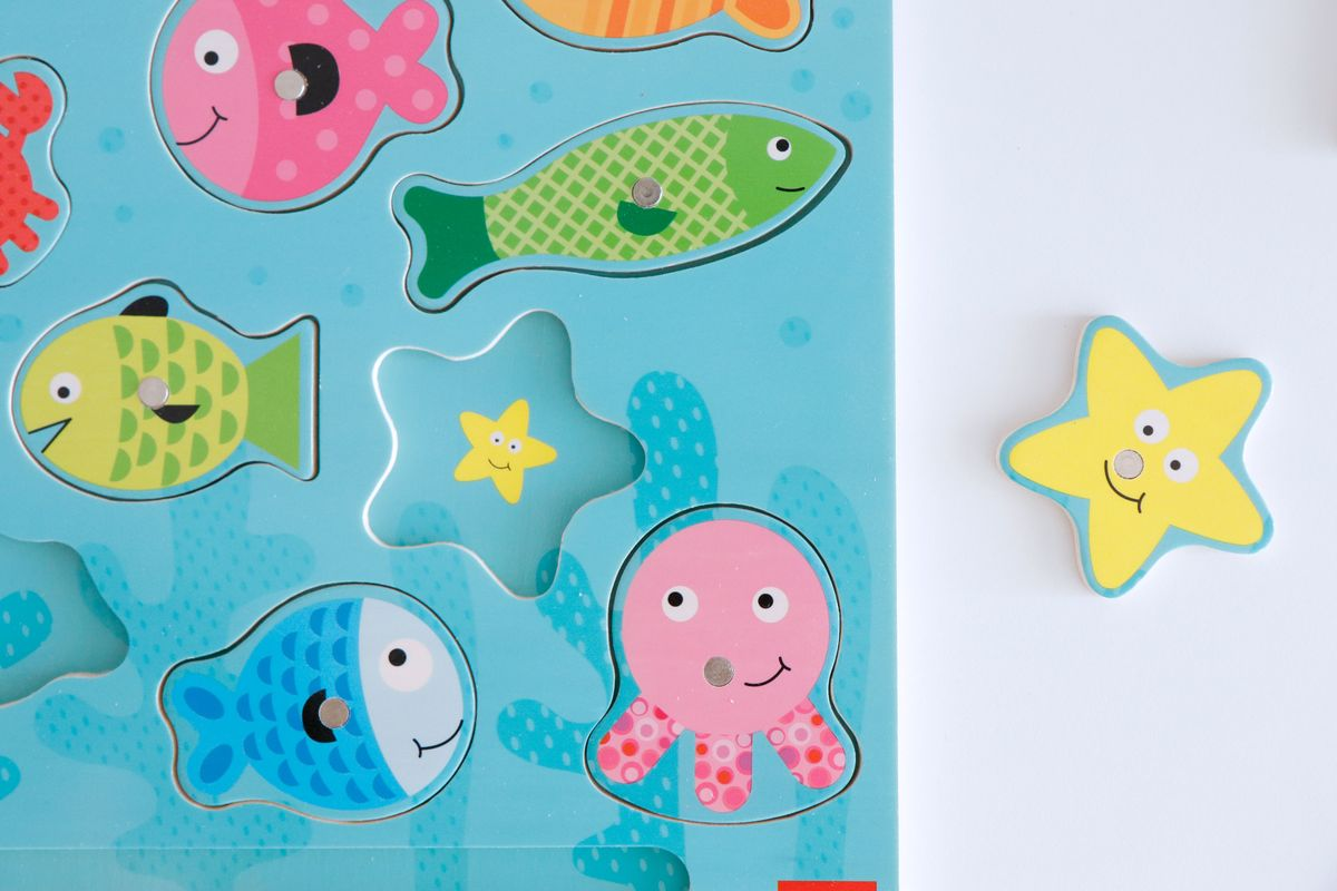 puzle-magnetico-pesca-goula-11