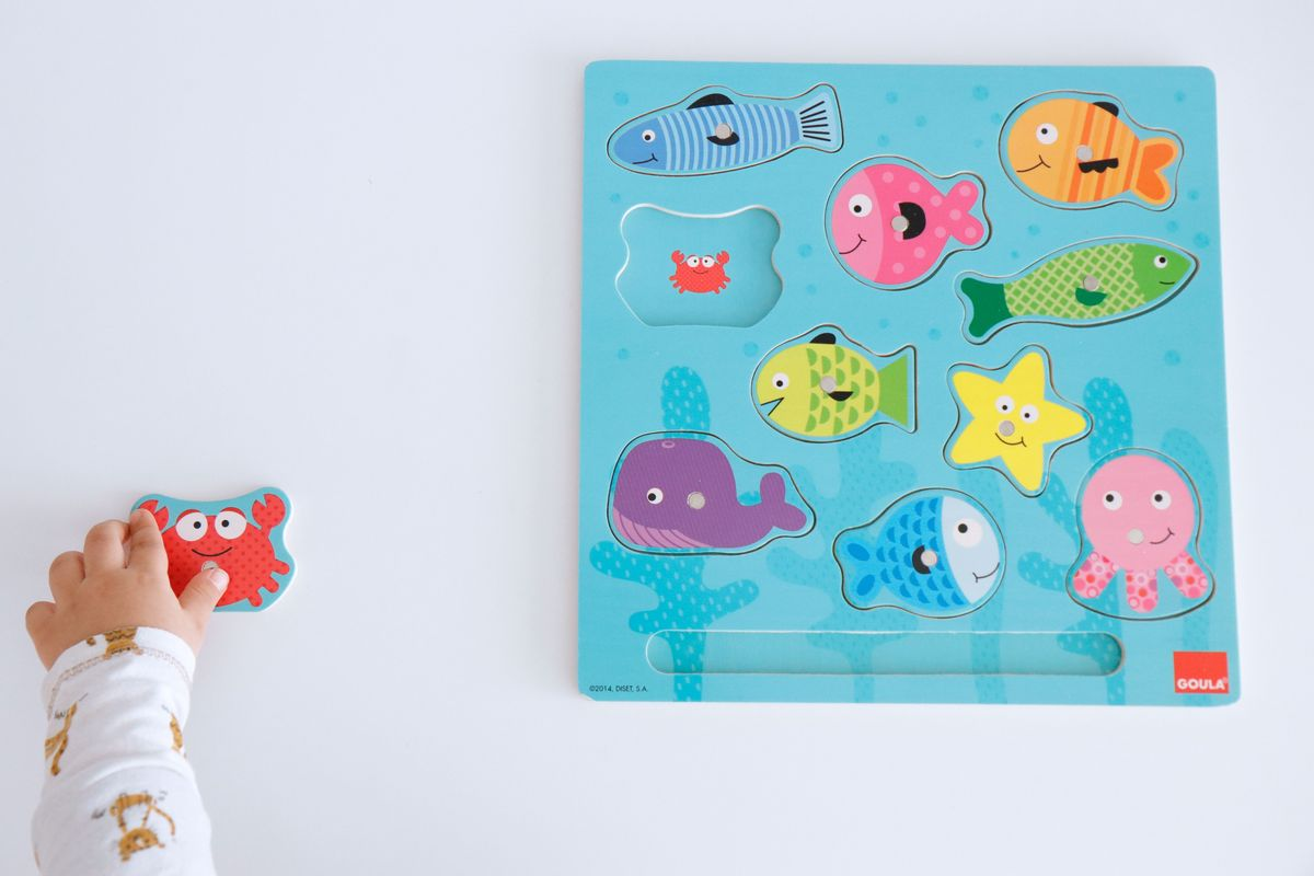 puzle-magnetico-pesca-goula-13