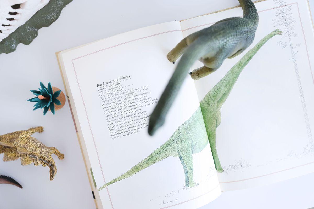 dinosaruios-schleich-109